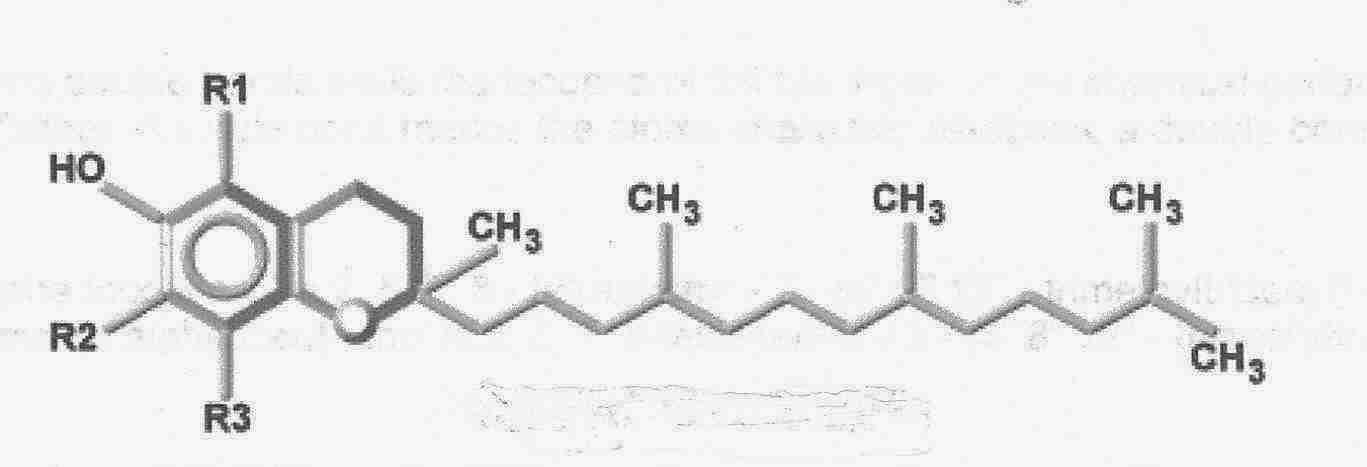 VITAMIN E (TOCOPHEROLS AND TOCOTRIENOLS)